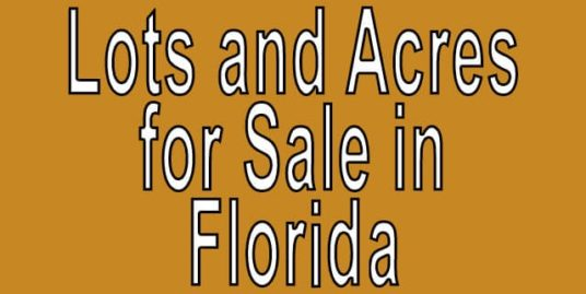 Buy Cheap Land in Florida Buy cheap land worldwide $100 per acre Buy Cheap Land in Florida Buy cheap land worldwide $100 per acre